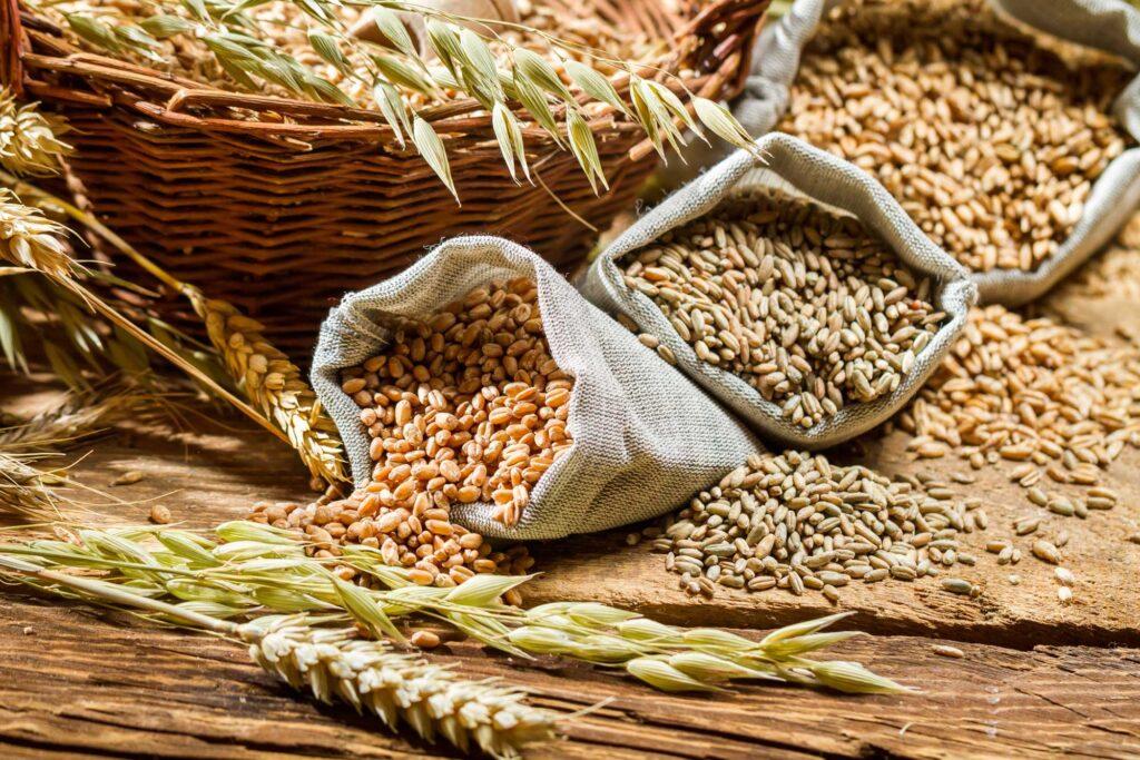 Alimentos donde podemos encontrar el selenio
