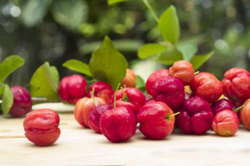 acerola, vitamina c de fuentes naturales